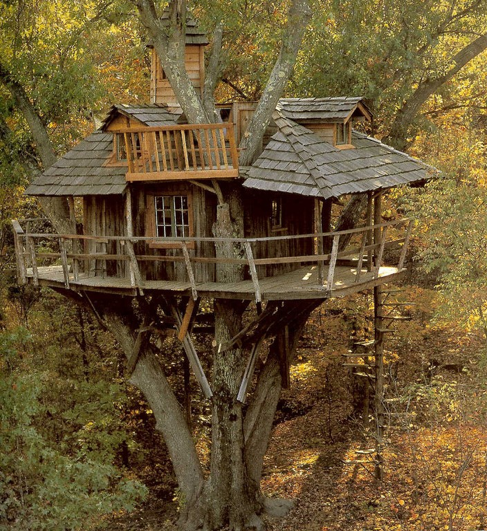 Domy na drzewach urloplandia noclegi atrakcje restauracje wczasy spa Strona house